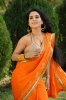 kavya-singh-hot-photos-_4_