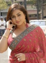 hot-namitha-in-saree