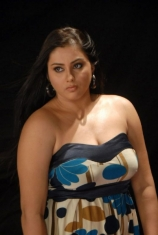 namitha-hot-photos-38