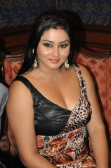 namitha-hot-photos