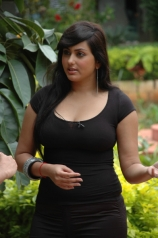 namitha-mindblowing-photos