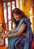 shruti-haasan-stills-in-saree-photos