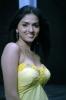 sunaina-latest-hot-pics