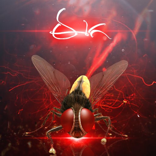 The fly in Eega created havoc in South film industry