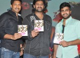 Run-Raja-Run-Movie-Audio-Function-Photos