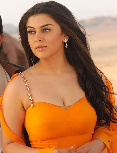Fans-Missbehave-with-Hansika