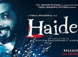 Haider Review