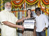 Bengal Tiger Movie Launch Photos
