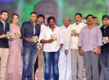 Tiger Audio Launch