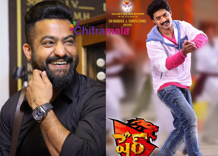 NTR Guest for Sher Audio Function