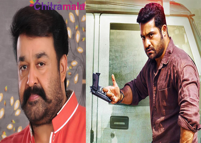 Mohan Lal in NTR's Next Film