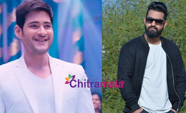 Mahesh Babu Voice for Jr NTR