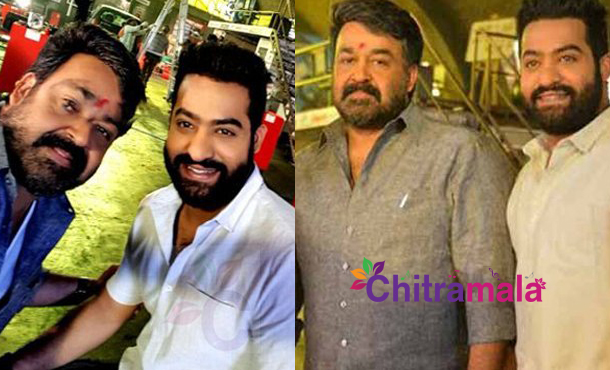 Mohanlal Gift to Jr NTR