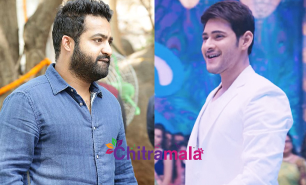 Mahesh Babu vs Jr NTR