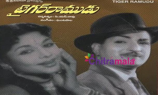 NTR in Tiger Ramudu