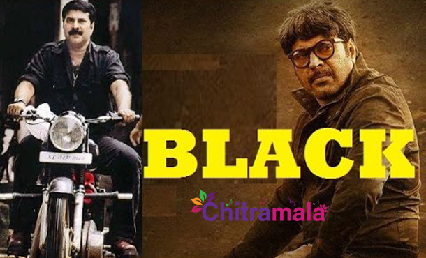 Mammootty in Black