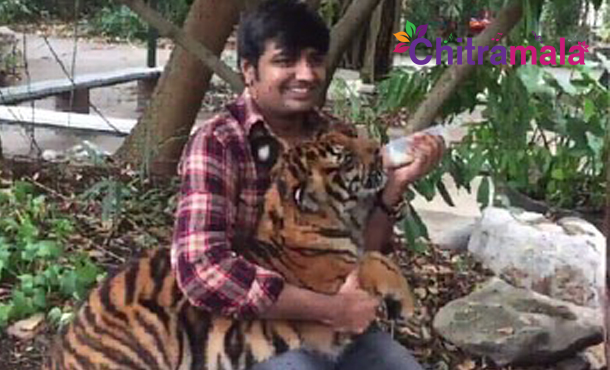 Satish Tiger