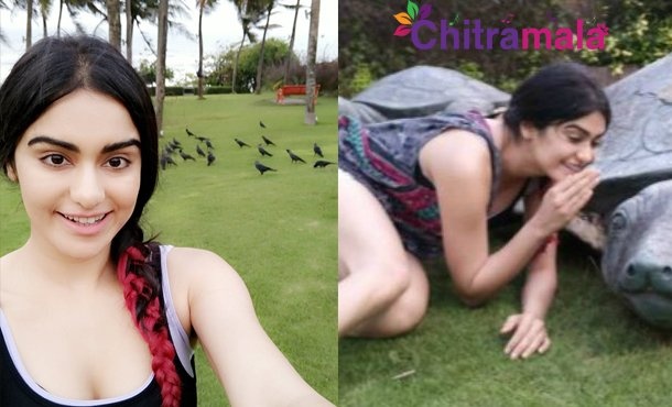 Adah Sharma Ad for PETA