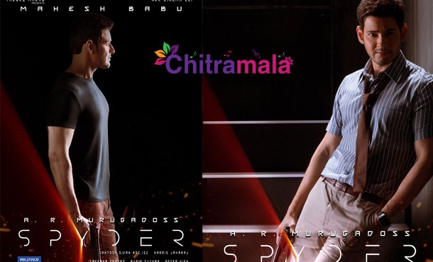 Spyder First Look