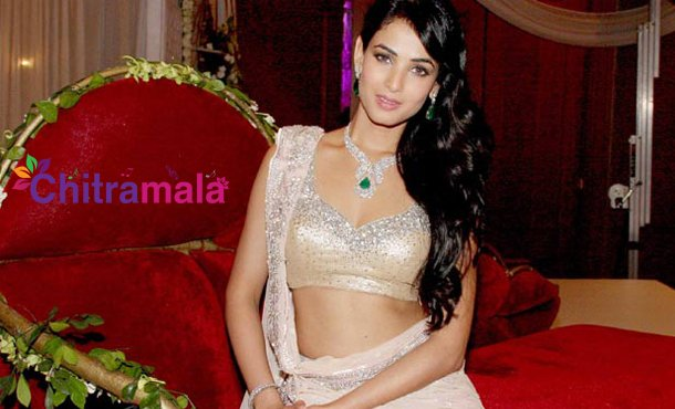 Sonal Chauhan to get married