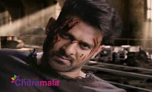 Prabhas's New Stunt For Sahoo