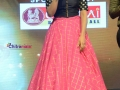 Gentleman-Movie-Audio-Launch-Photos (4)