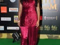 Celebs-at-IIFA-Utsavam-Awards-2016-Photos (34)