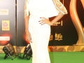 Celebs-at-IIFA-Utsavam-Awards-2016-Photos (62)