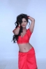 hot-poonam-pandey-in-malini-and-co-movie