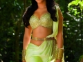 Shruti-Hassan-Hot-Photos-in-Puli