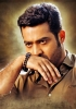 junior-ntr-latest-photos-in-temper