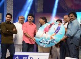 Temper Audio Launch Photos