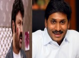 Lion vs Jagan