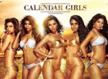 Seductive Calendar Girls Movie Poster