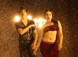Bengal Tiger Movie Hot Stills