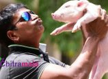 Ravibabu Piglet Movie Titled as Adhugo