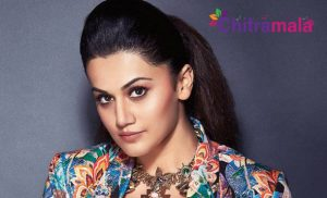 Taapsee Comments on Telugu Audience