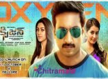 Oxygen Audio Launch in Nellore