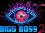 Bigg Boss Telugu Season 2 Contestants List