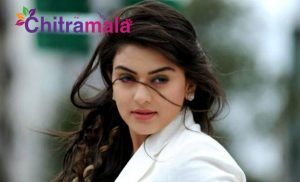 Hansika Motwani in Tollywood