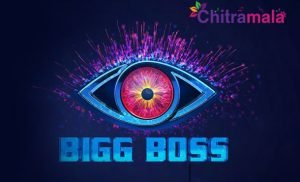 Bigg Boss 3 Contestants List